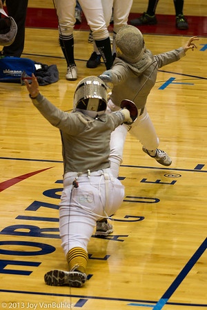 12/365 - Fencing