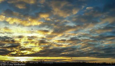 7/365 - Sunrise