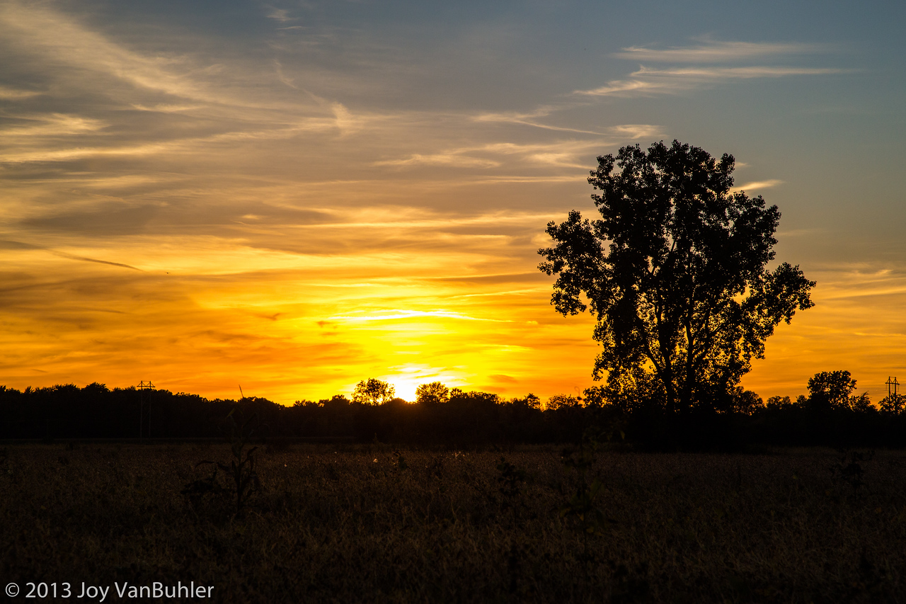 275/365 - Sunset