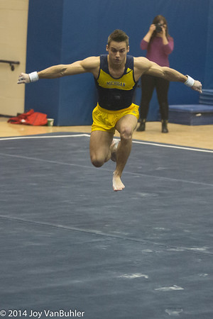 32/365 - Sam Mikulak on Floor Exercises