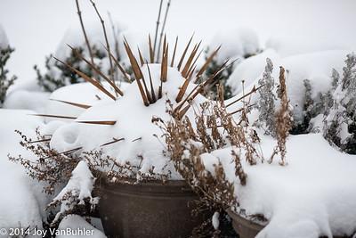 2/365 - Snow
