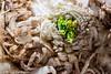 326/365 - Celery Root