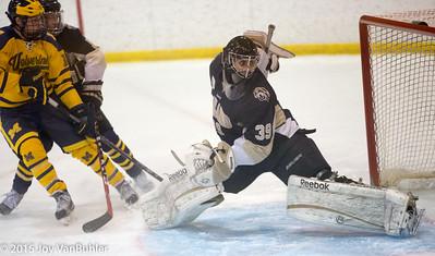 23/365 - Hockey