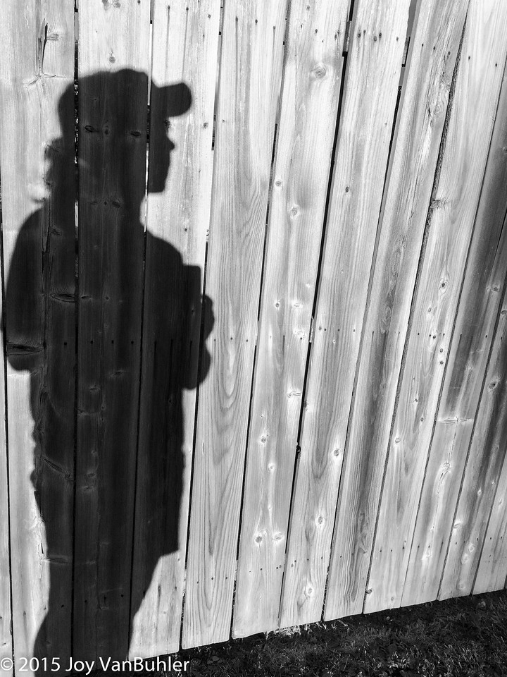 223/365 - Shadows in Black and White