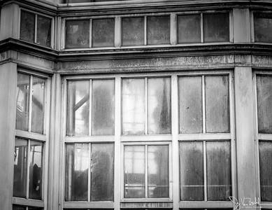 362/365 - Belle Isle Conservatory