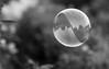 191/365 - Bubble