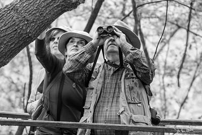 140/365 - Birdwatching
