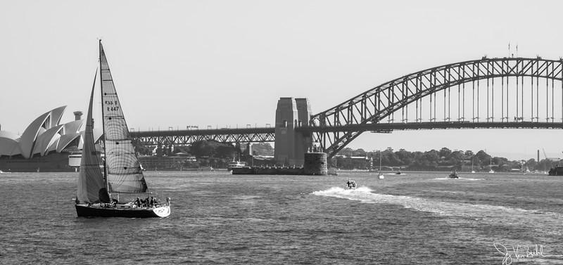 134/365 - Sydney Harbor