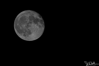 260/365 - The Moon
