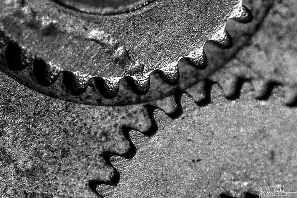 335/365 - Gears