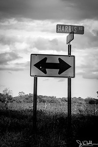 257/365 - Road Signs