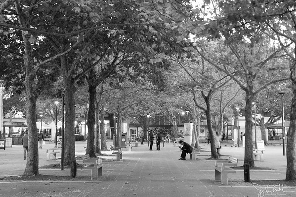 124/365 - Street Scene