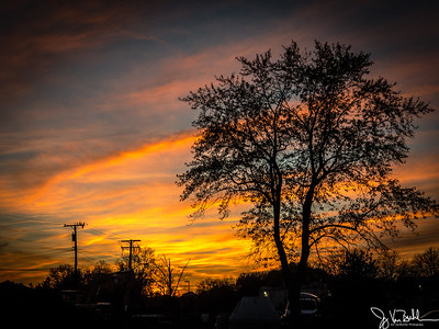 307/365 - Sunset