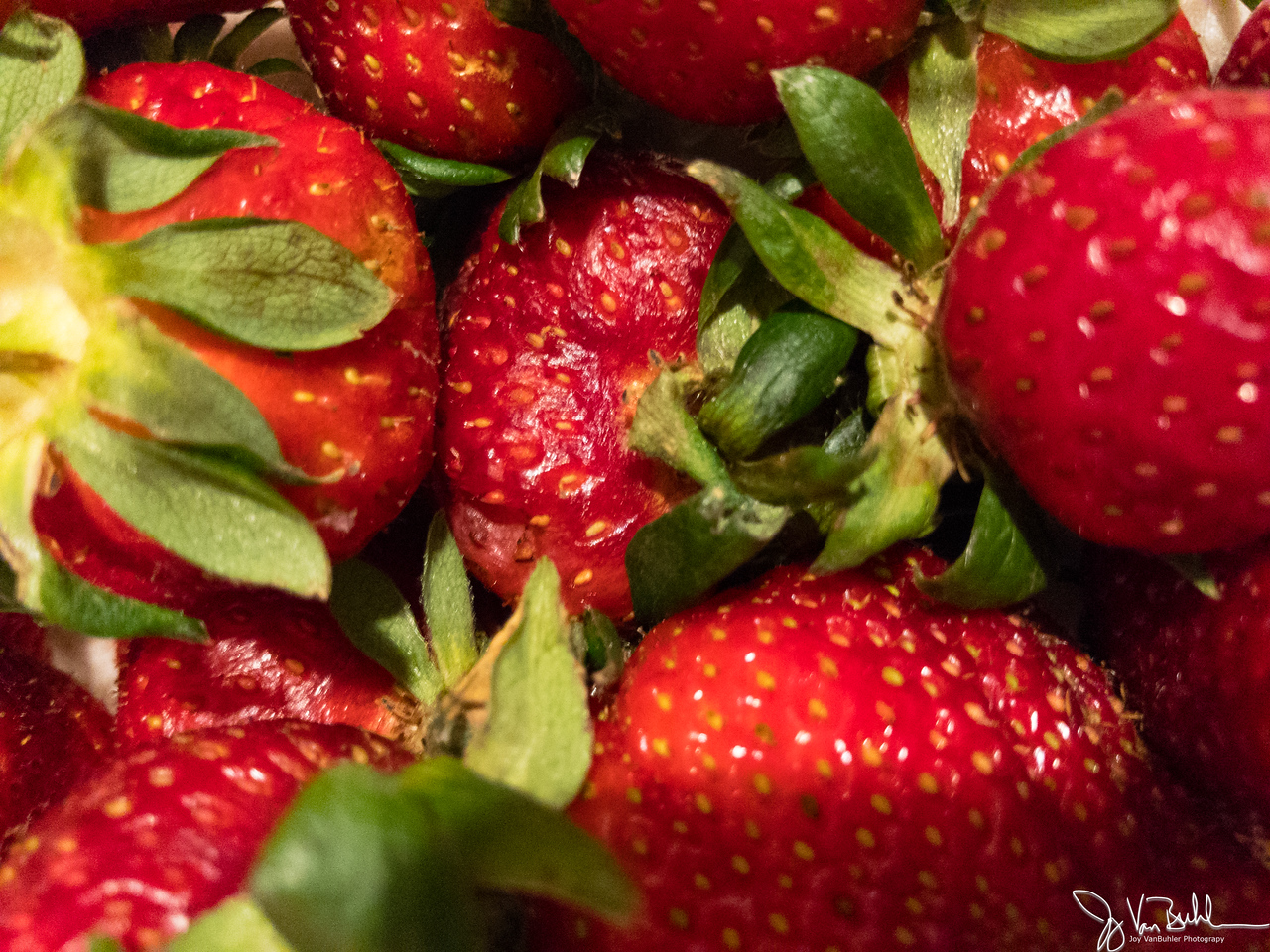 74/365 - Strawberries