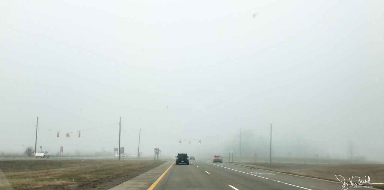 55/365 - Fog