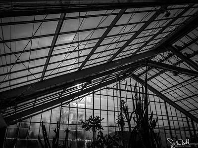 363/365 - Matthaei Botanical Gardens