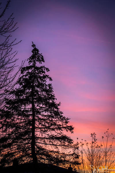 324/365 - Sunset