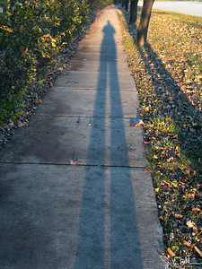 328/365 - Long Shadows