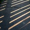 209/365 - Shadows
