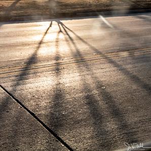 44/365 - Shadows
