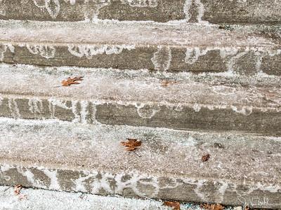 41/365 - Salted Steps