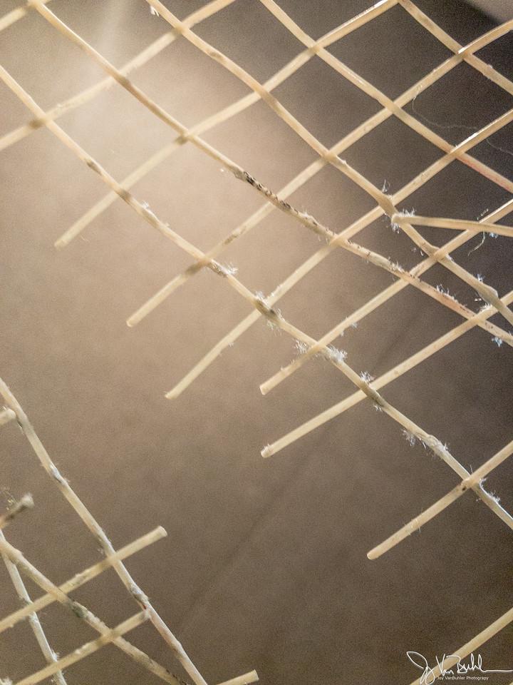 172/365 - Strings