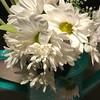 87/365 - Flowers