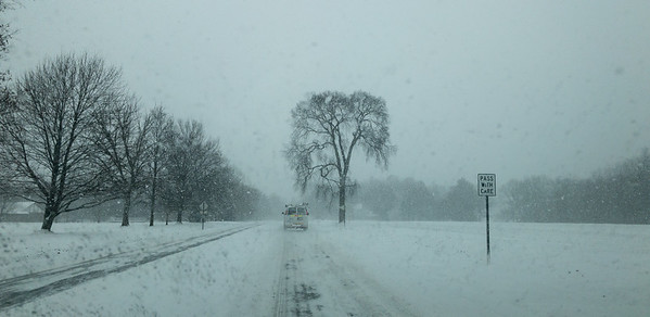 19/365 - Snow