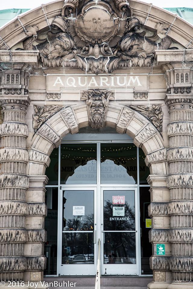 10/52-2: Aquarium