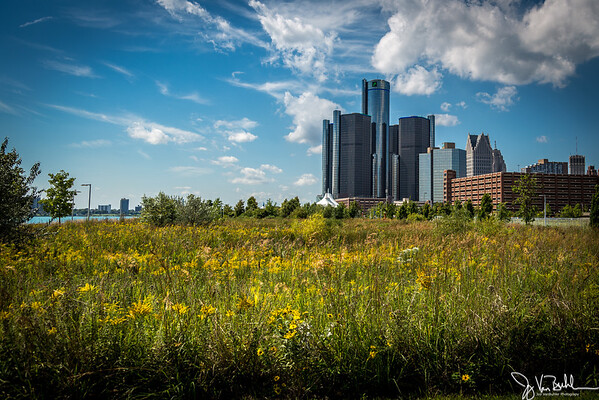 39/52-1: Detroit Skyline