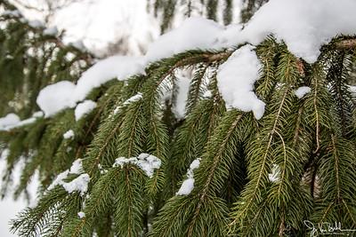 50/52-4: Snowy Day