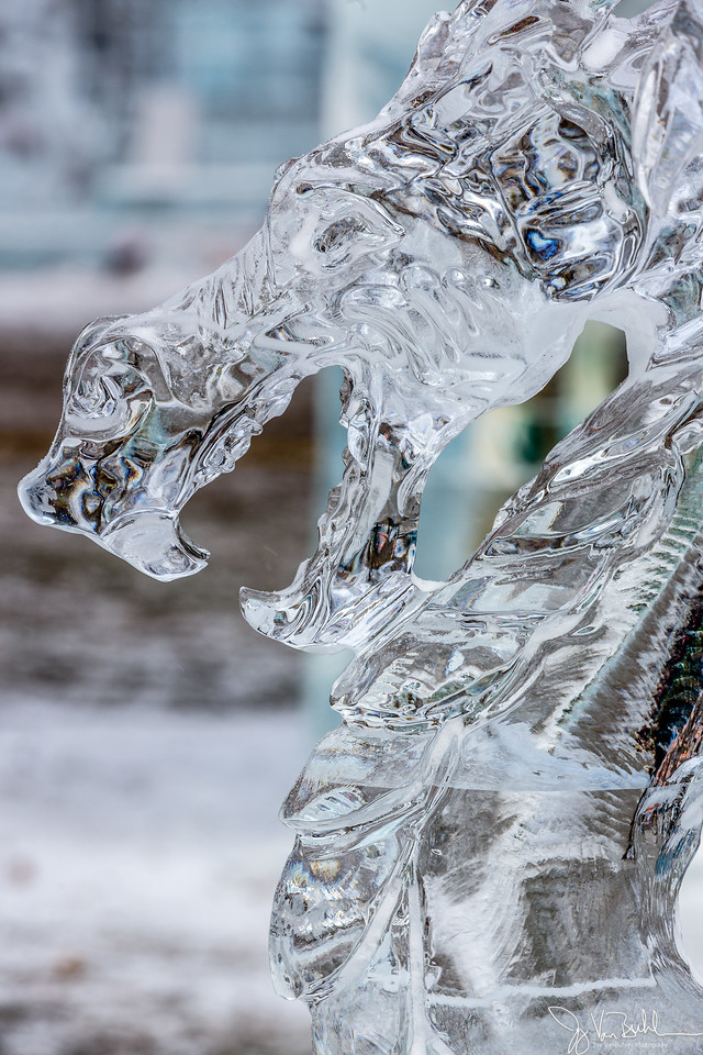 1/52-4: Plymouth Ice Festival