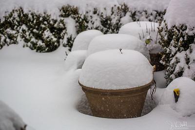 6/52-3: February Snow