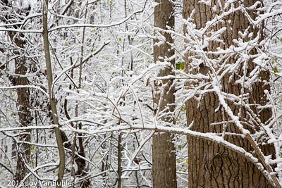 47/52-4: Snow