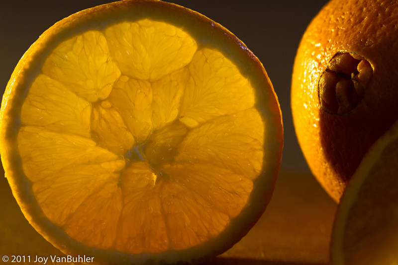 1/30/11 - My last few Sunday pictures have been uninspired.  I had some oranges to use and thought I would put them to good use before they became orange juice