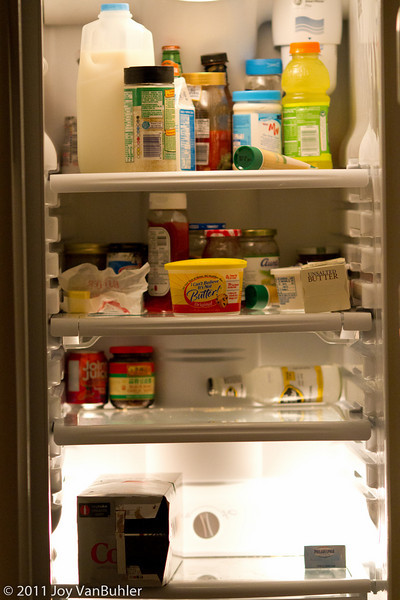3/3/11 - I've been out of town for the last several days.  There's nothing in the fridge tonight.