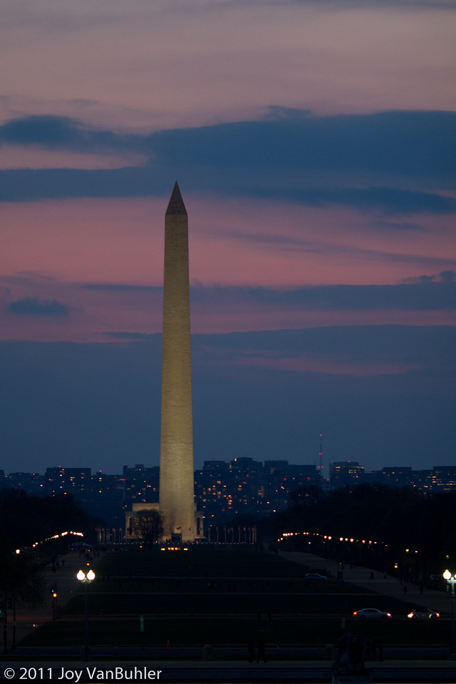4/1/11 - I spent the weekend in Washington DC and I took a lot of pictures while I was there.  I had a hard time picking one picture for today.  I really wanted to pick one with lion cubs from the National Zoo in DC, but I loved this shot of the Washington Monument at night and I thought that it better represented the location.