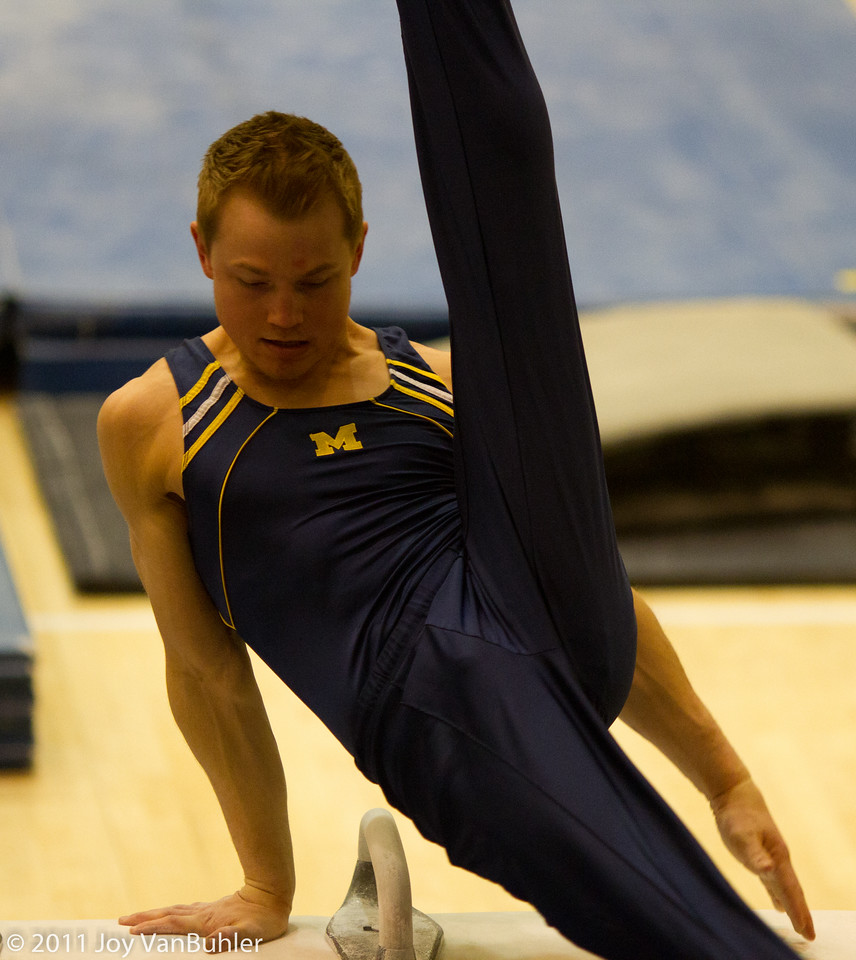 3/12/11 - Went to the Michigan Men's Gymnastics match against Oklahoma.  This is Chris Cameron on the pommel horse.  I had a hard time picking just one picture -- these guys are very impressive.