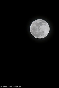 1/19/11 - There was a beautiful full moon tonight