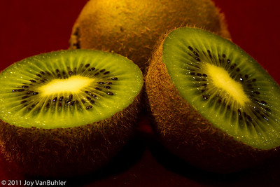 1/27/11 - Experimented with different angles and lighting for Kiwis
