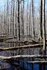 20140426_131757 - 0023 - Sandy Ridge Reservation