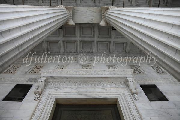 The foreboding and powerful columns of Chicago's Field Museum were a sight to behold during the summer of 2010.