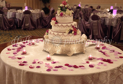A beautiful tiered cake was onhand at the center of the dance floor.