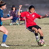 SM1802_18_0044_State Cup copy