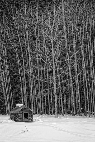 ~ Deserted ~