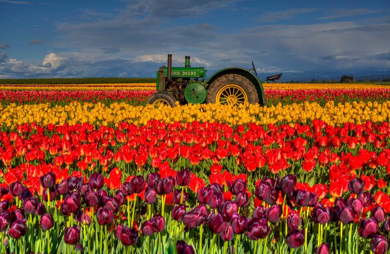 ~ John's Tractor ~