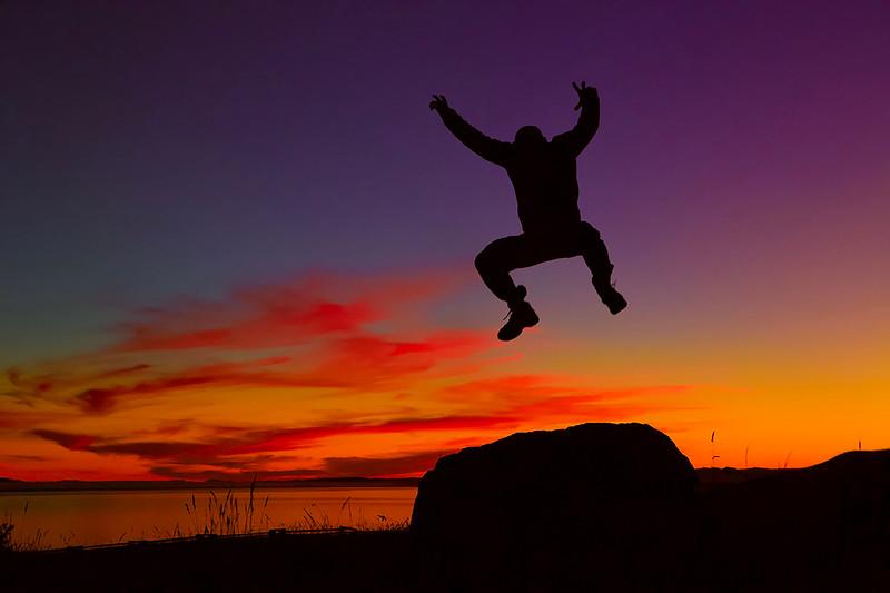 ~ Free Fall ~