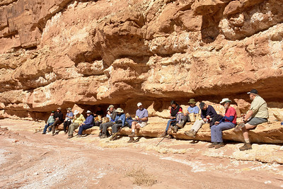 _DSC5487  2008 Elderhostel  Cathedral Wash hike.  This is the entire group stopping for a lunch break