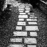 Steps in the Rain