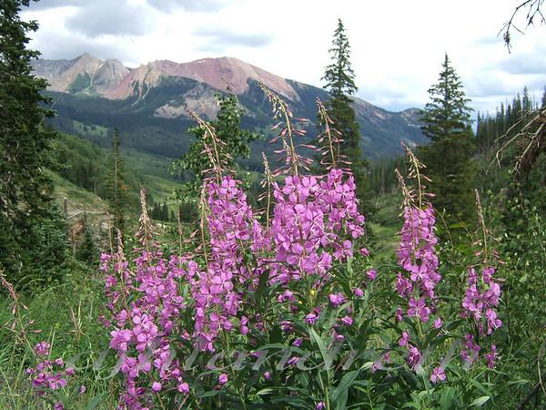 18 - Crested Butte, Colorado